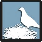 ECOSPI: asportazione guano e bonifica sottotetto