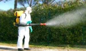 Disinfezione  Erba